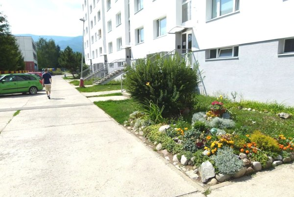 Záhon s kvetmi, ako aj pol metra trávnika pôjde zrejme preč.