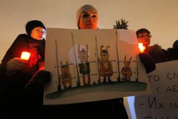 Ruskí aktivisti protestujú v Petrohrade proti zákonu zakazujúcemu adopcie do Spojených štátov.