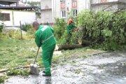 Výrub stromov nahneval niektorých ľudí zo Šturky.