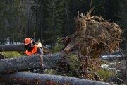Drevorubač utrpel pri manipulácii s drevom vážne poranenie hlavy.