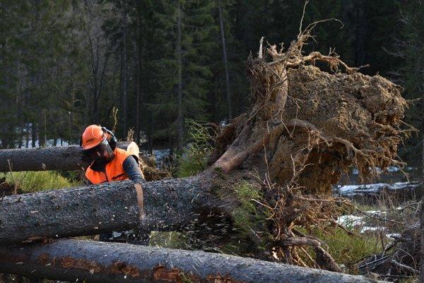 Drevorubač utrpel pri manipulácii s drevom vážne poranenie.