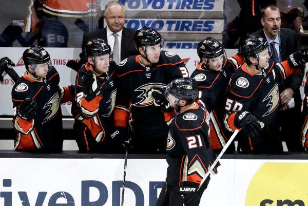 Striedačka Anaheim Ducks, ilustračná snímka.