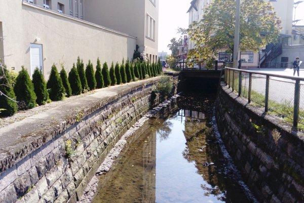 Kvôli prácam museli hladinu vody v koryte Pereca znížiť.