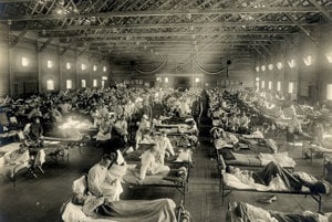 Španielska chrípka bola celosvetová pandémia v rokoch 1918 až 1920. Pôvod mala pravdepodobna v Ázii a z vojakov sa preniesla do USA a Európy. Vojnová cenzúra začiatok pandémie tajila, no povedomie o nej šírilo neutrálne Španielsko, podľa ktorého dostala názov. Podľa časopisu Nature na chrípku zomrelo až 50 miliónov ľudí.