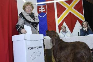 Na snímke dôchodkyňa Anastázia Treskoňová vhadzuje obálku s hlasovacími lístkami do volebnej schránky počas volieb do orgánov samosprávnych krajov v najvyššie položenej volebnej miestnosti v SR na Štrbskom Plese.