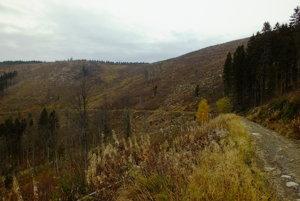 Pohľad na kopce na Muránskej Planine.