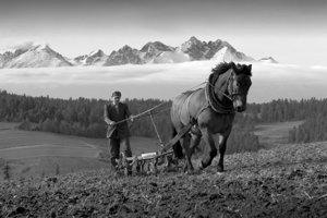 Black&White - 2. miesto: Peter Olekšák – Hradisko (Hradisko, okr. Kežmarok)