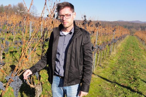 Adam Žilík hovorí, že aj keď je objemovo hrozna menej, na cene vína by sa to nemalo prejaviť.