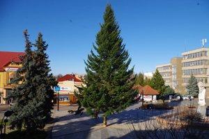 Vianočný strom v centre Michaloviec stojí už vyše týždňa.