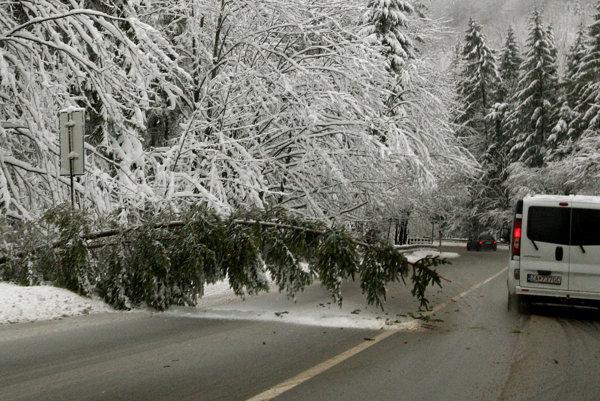 Kalamita na cestách. Vietor lámal stromy v celom regióne.
