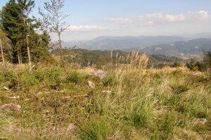 Pohľad na Beskydy z Chotárneho kopca.