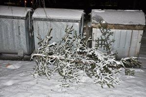 Vianočné stromčeky stačí vyniesť ku kontajnerom.
