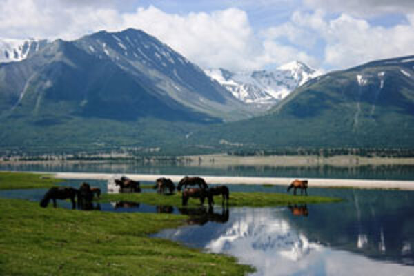 Záber z filmu slovenského dokumentaristu Pavla Barabáša o Mongolsku.
