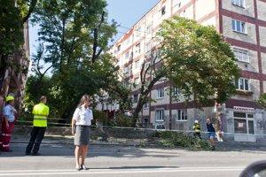 Medzi blokmi domov Unitasu rastie stále zeleň.