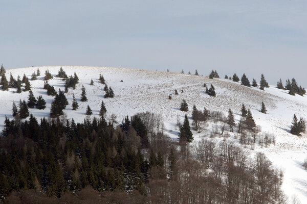 Hrebeň Krížnej je rozsiahly, horskí záchranári si však poradili.