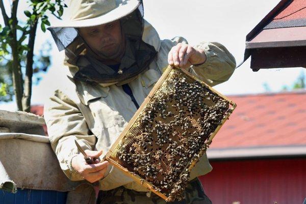 Včelárstvo priťahuje stále viac mladých ľudí.