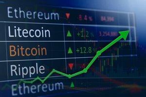 Kryptomeny sú nestála investícia, ale výnosná.