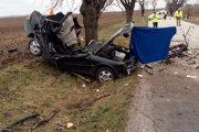 Vodička po náraze do stromu podľahla ťažkým zraneniam.
