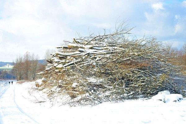 Po výruboch neďaleko rybníkov Slavojka, ktoré sú pri železničnej trati. Padlo množstvo stromov. Mesto dostalo nemalé financie ako náhradu, Kedy ako ich plánuje použiť?
