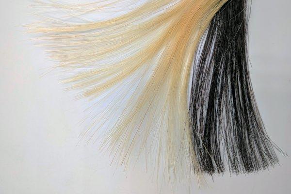Svetlé vlasy pred a po zafarbením farbou na báze grafénu.