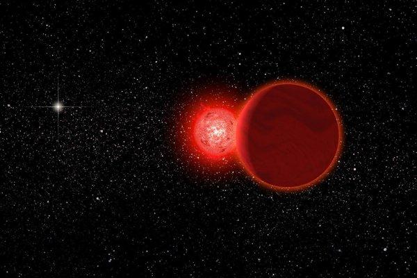 Umelecké zobrazenie Schulzovej hviezdy spolu s hnedým trpaslíkom, ktorý ju obieha. Vľavo v pozadí sa nachádza Slnko.