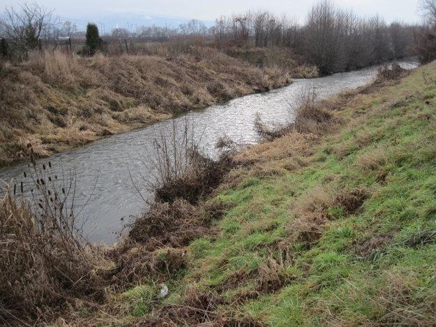 V časti rieky chýbajú ryby.