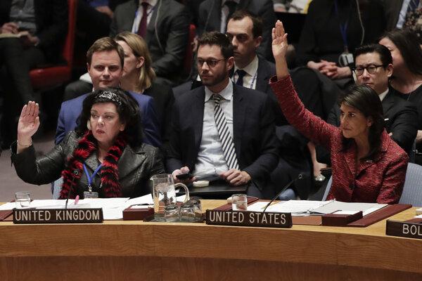 Hlasovanie Bezpečnostnej rady.