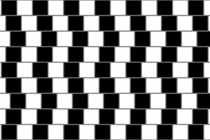 Ilúzia kávovej steny. Zdá sa, že v skutočnosti rovnobežné čiary sú krivé. Klam spôsobuje vybočenie jednotlivých štvorcov. Dôležitú úlohu však zohrávajú aj šedé línie medzi štvorcami.