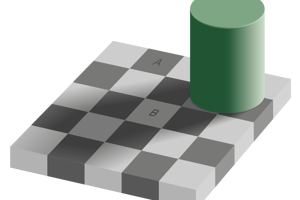 Ilúzia tieňa na šachovnici.Zdá sa, že štvorce A a B majú rozdielnu farbu. V skutočnosti je ich odtieň rovnaký. Dá sa to overiť nástrojom výberu farby aj v Skicári.