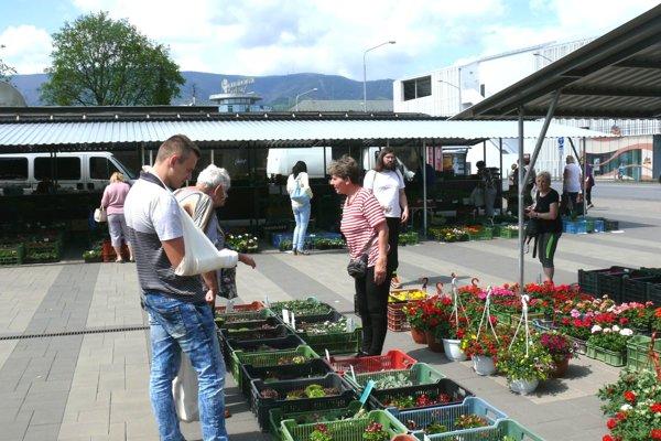 Erika Retkešová (vpravo) prišla do Martina predávať kvietky na sadenie až od Komárna.