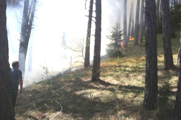 Oheň sa horou rýchlo šíril po suchej tráve.