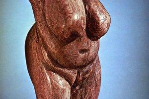 Najkrajší a najvýznamnejší paleolitický výtvarný prejav z územia Slovenska. Najstaršie zobrazenie ženského aktu z nášho územia. Okolo 22 800 rokov p.n.l.