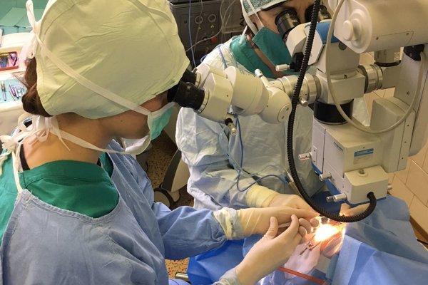 Momentka z operácie.