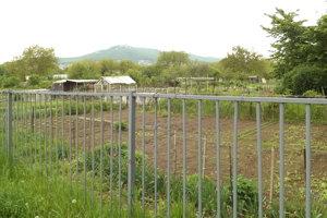 Hneď za plotom, kde je teraz štrková cesta, boli predtým záhrady. Pre orientáciu - vľavo vidieť starý bytový dom.