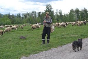 Valach Samo Giertli pasie ovce na Zbojskej tretí rok. Tvrdí, že pri tejto práci mládenčil aj zostarne.