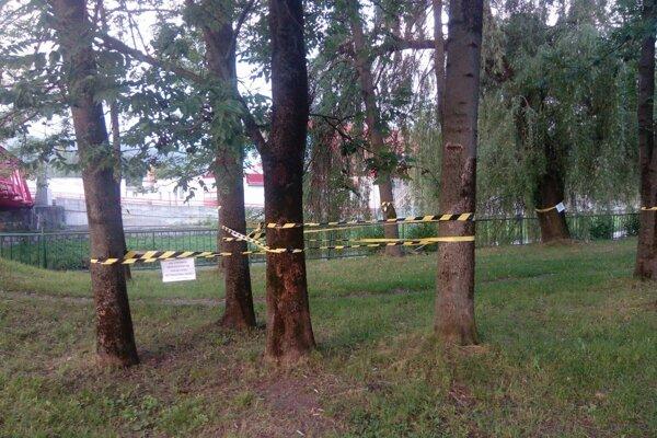 Pri Hrone sa dnes objavili opáskované stromy s tabuľkami.