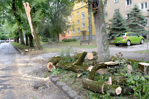 Jarná ulica. Tento strom spadol na autá.