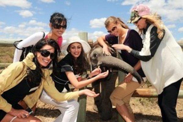 Krásna Žilinčanka (vľavo) a ďalšie finalistky Miss World pri návšteve safari.