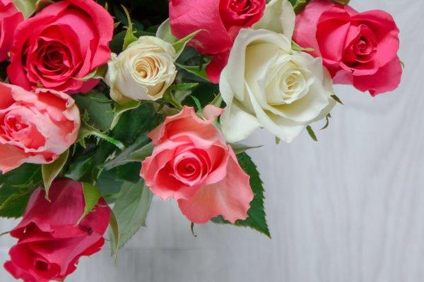 Bude venovaná ružiam.