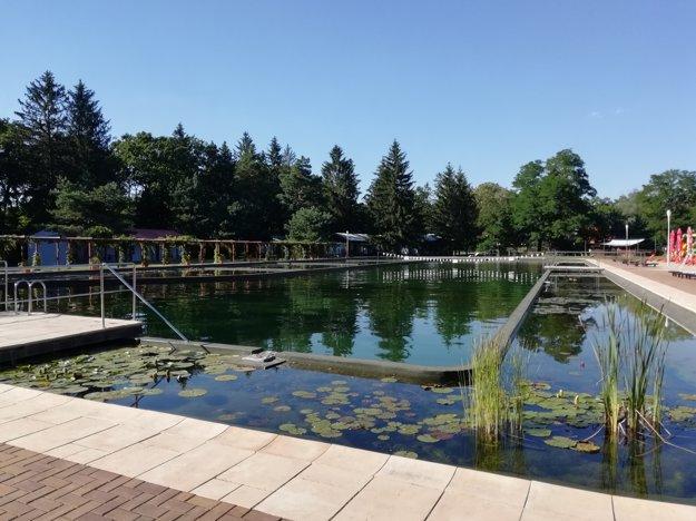 Bio bazén Borovica v Plaveckom Štvrtku.