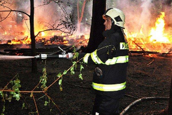 Vlani likvidovali hasiči takmer dvesto požiarov.
