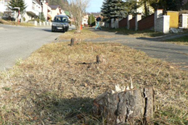 Hamuljakova ulica. Prišla o šestnásť stromov. Mesto ich muselo dať spíliť, lebo zasahovali do ochranného pásma plynárov.