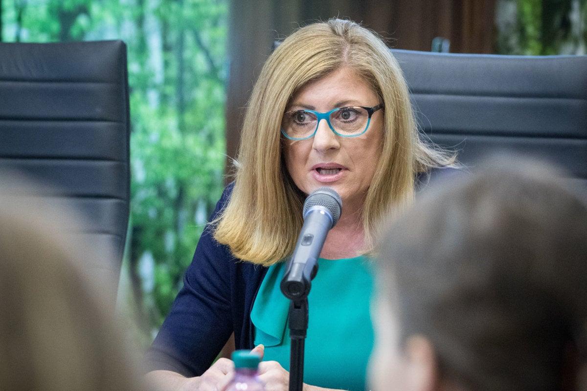 b82847641a44 Podpredsedníčka vlády a ministerka pôdohospodárstva a rozvoja vidieka SR  Gabriela Matečná.