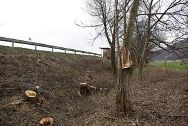 Zrezaná orechová alej. Drevo spracovali na drevoštiepku.
