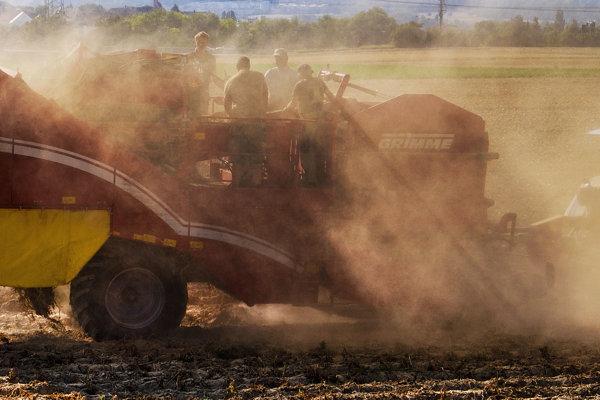 V Nemecku rastie politický tlak, aby sa roľníci mohli poistiť proti suchu