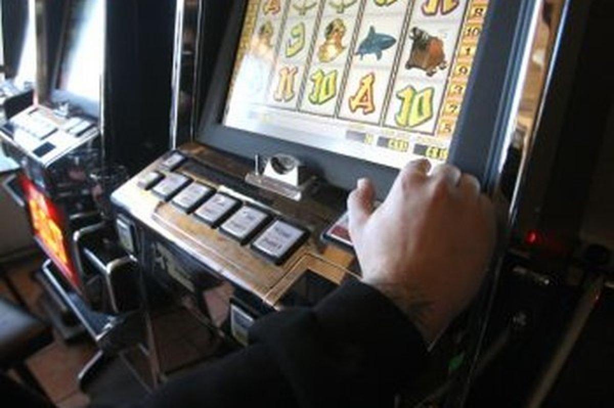 pravidlá datovania gambler