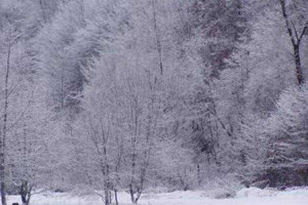 Zima ukazuje svoju silu.