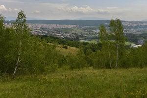 Lúku v blízkosti Košíc už mesto zastavať neplánuje.