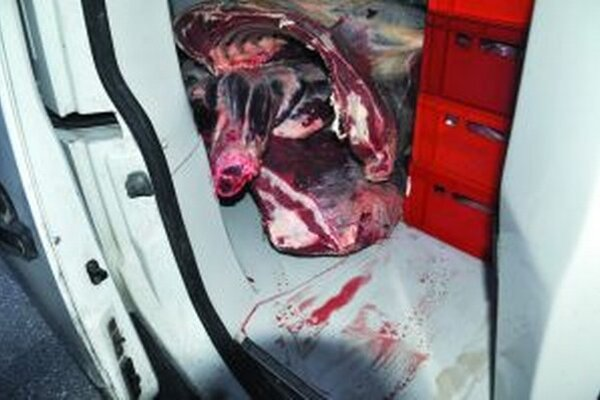 Počas prevozu mäsa objavia inšpektori rôzne nechutnosti.