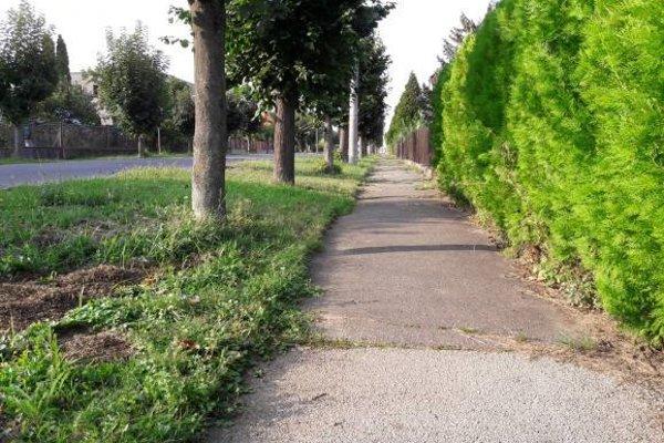 O zásluhy na rekonštrukcii 1,2 kilometra dlhého chodníka na Dlhej sa prú kandidáti na poslancov.